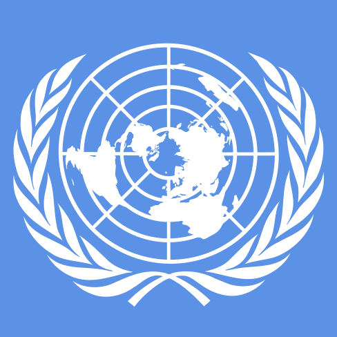 the united nations paper tiger